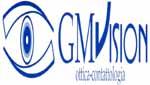 gmvision1