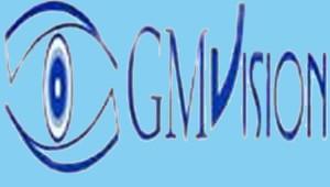 gmvision_03 copia